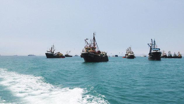 Pesca de anchoveta empezará el 18 de enero de este año. (USI)