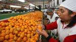 Banco Mundial: Perú se desacelerará desde el 2018 - Noticias de pobreza monetaria
