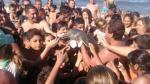 Argentina: Otro delfín muere por culpa de turistas que lo dejaron fuera del agua para tomarse selfies [Video] - Noticias de vida silvestre