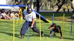 Parque de Las Leyendas: Brigada canina se lucirá este domingo - Noticias de parque de las leyendas