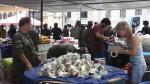 Palacio de Gobierno recolecta más de 200 toneladas de donaciones para damnificados - Noticias de colbert ruiz
