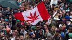 Canadá presentará en abril proyecto de legalización de la marihuana - Noticias de legalizacion de marihuana