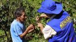 Declaran alerta sanitaria animal en 11 regiones en emergencia ante lluvias y huaicos - Noticias de region lima