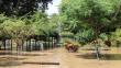 Piura: Estos son los lugares públicos que se encuentran totalmente inundados