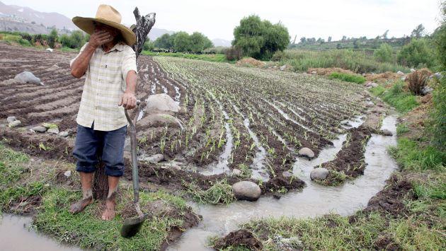 Apoyo al campo. Producción agrícola no se puede paralizar por fenómenos naturales, dijo el ministro. (Miguel Idme)