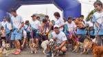 Más de mil perritos participaron de la maratón canina en el Campo de Marte. (Municipalidad de Jesús María)