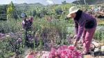 Mujeres de Ayacucho tienen menos acceso a Educación en todo el país - Noticias de programas sociales