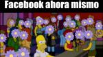 Así son los mejores memes de la reacción 'Me enflorece' - Noticias de elba flor leon coba