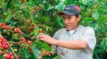 Raúl Mamani: El hombre detrás del mejor café del mundo [Videos] - Noticias de parte ii