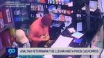 Delincuentes se robaron hasta los perros de una clínica veterinaria [VIDEO] - Noticias de vernia pinto