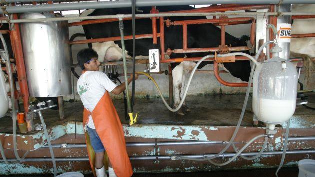 Reglamento establecerá los requisitos que deberán cumplir los alimentos de origen bovino destinados al consumo humano.