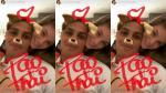 ¿Paolo Guerrero como un 'tierno cachorro' con Thaísa Leal? Mira su primera foto  juntos - Noticias de brasil