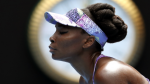 Venus Williams se encuentra involucrada en un accidente vehícular mortal - Noticias de accidentes automovilísticos