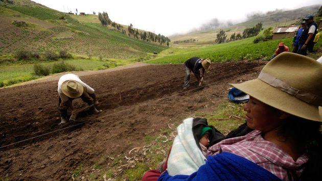 Sector agropecuario retrocedió un 0.8%, principalmente en el norte del país (USI)