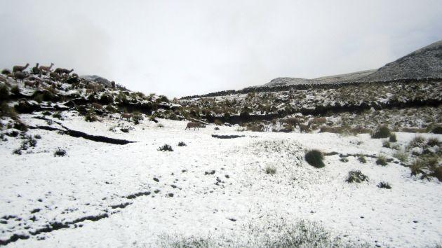 Tacna soportó -14.3 grados y es la temperatura más baja del año. (Difusión)