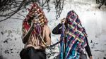 'No veo, presencio': Muestra de arte inspirada en el ritual de la ayahuasca - Noticias de ino moxo