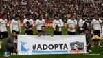 Una razón de 'cuatro patas' fue suficiente para que Sudamérica alabe a Colo Colo [FOTOS Y VIDEO] - Noticias de canes