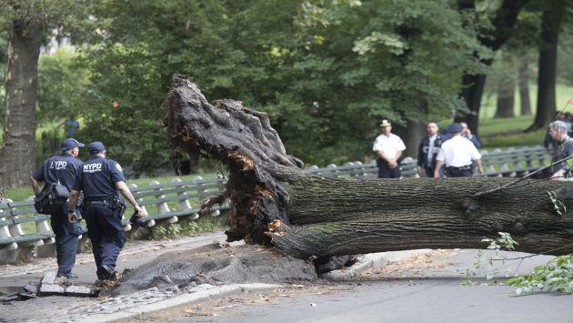 Nueva York: Un árbol cayó en Central Park y aplastó a una mujer y tres niños (AP)
